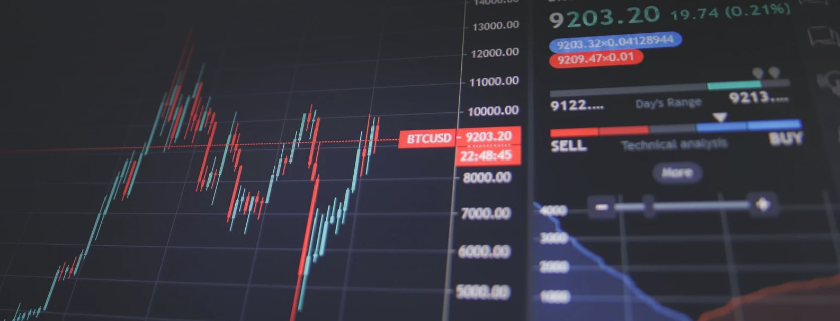 No correlation between the stock market and the economy